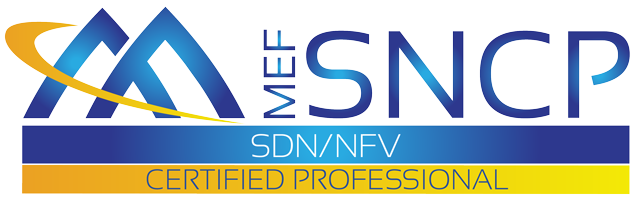 MEF-SDN/NFV